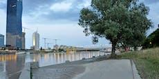 So lange dauern die Aufräumarbeiten auf der Donauinsel