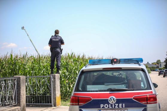 Der Verdächtige wurde in einem Maisfeld vermutet. Die Feuerwehr wurde hinzugezogen und die fuhr die Drehleiter aus.