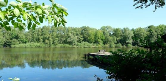 Der Vorfall passierte am Bremfelder See (Symbolbild)