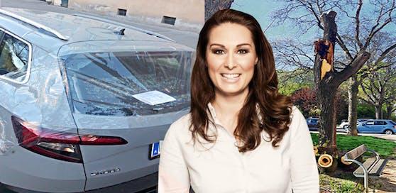 Genau am Freitag den 13. krachte Maria T. ein Baum aufs neu gekaufte Auto.