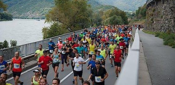 Zum 20. Mal findet der Wachau-Marathon statt.