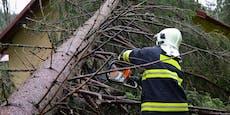 Zahlreiche Einsätze der Feuerwehr wegen Sturmschäden