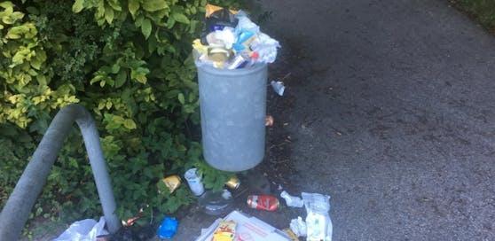 Traisen: Ärger bei Spaziergängern über volle Müllkübel.
