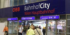 Polizei fasst international gesuchten Gangster in Wien