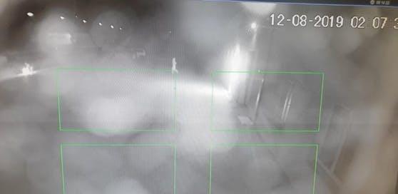 Ein Ausschnitt aus dem Überwachungsvideo vor der FPÖ-Zentrale aus dem August 2019. Diese Szenen zeigte der ORF bei einem Beitrag über einen ganz anderen Brandanschlag auf ein Asylheim in Himberg.