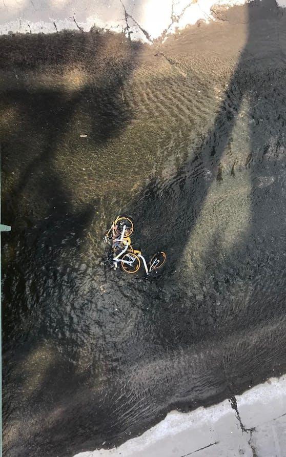 Schon wieder sind zwei Leihräder im Wienfluß Höhe Stadtpark gelandet.