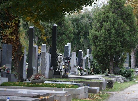 Hast Du den Zentralfriedhof schon bei Nacht gesehen? Möglich wird das ab 19. Oktober mit einer geführten Taschenlampen-Tour.