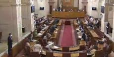 """""""Ruhe im Saal"""" - ein ungebetener Gast im Parlament"""