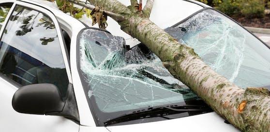 Für weite Teile des Landes wurde eine Unwetterwarnung ausgesprochen. Bäume könnten entwurzelt werden. (Symbolfoto)