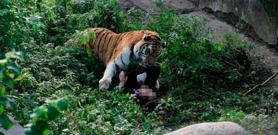 Das Tier attackierte die Pflegerin und drückte sie zu Boden.