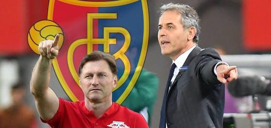 Ralph Hasenhüttl und Marcel Koller stehen auf der Basel-Wunschliste.