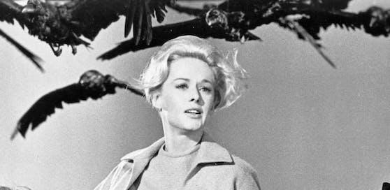 """Tippi Hedren in """"Die Vögel"""""""