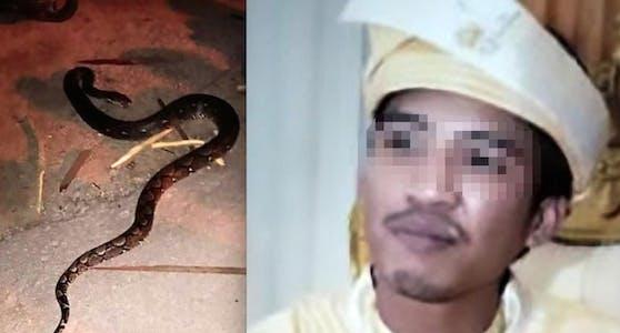 Drama: Zaim Khalis K. (35) wurde auf seinem Bike von dem Python (li.) erwürgt