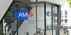 Keiner will 2.700-€-Job, AMS muss nun im Ausland suchen
