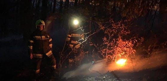 """Mittwochnachmittag geriet ein Wald am """"Gleichenberger Kogel"""" aus bislang unbekannter Ursache in Brand. Verletzt wurde niemand."""