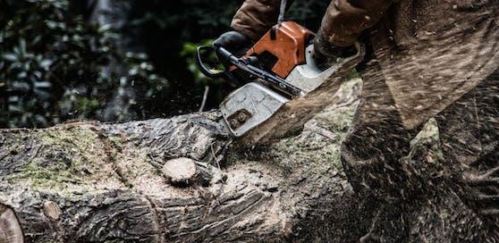 Der Mann (47) verletzte sich bei Forstarbeiten tödlich.