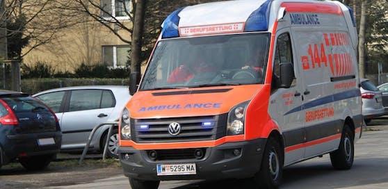 Die Wiener Berufsrettung kümmerte sich um den Verletzten