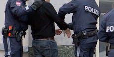 Wiener Polizei fasst europaweit gesuchten Straftäter