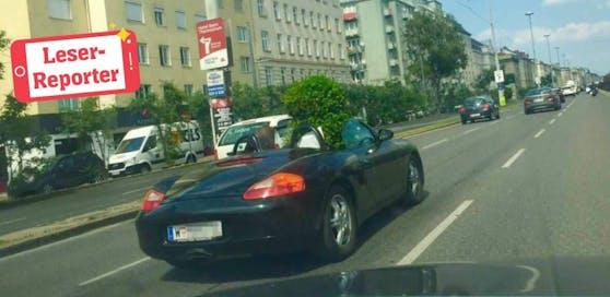 Dieser Porsche eignet sich perfekt zum Transportieren von Gartenbäumen.