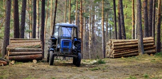 Symbolfoto eines Traktors im Wald.