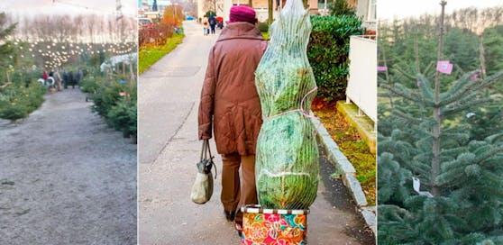 Eine 90-Jährige transportierte in Linz ihren Christbaum mit dem Trolley nach Hause.