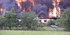 Verletzte und Riesenrauchsäule bei Brand von Hühnerfarm