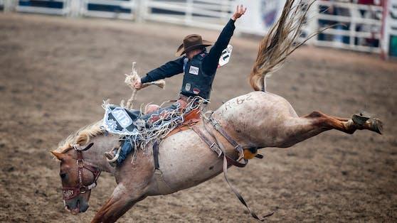 Acht Sekunden muss der Reiter im Sattel, beziehungsweise am Pferd bleiben.