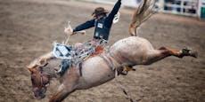 Buckeln und steigen - Werden Rodeo-Pferde gequält?