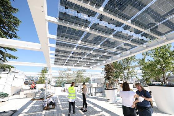 Nach dem Shopping im neuen Ikea Westbahnhofkann man sich am öffentlichen Dachpark unter Solarpanelen und schattigen Bäumen entspannen.