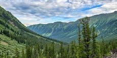 Russische Wälder im Kampf gegen die Klimakrise
