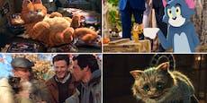 """""""Heute"""" sucht den beliebtesten Kater aus Film und TV"""