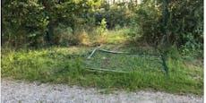 Unbekannter pflügt mit Pkw Aronia-Plantage in Gmünd um