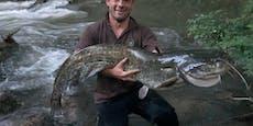 Fischer fängt Riesenwels und macht seinen Papa stolz