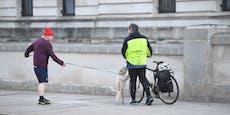 """Peinlich? """"Dog of Downing Street"""" schoss die Liebe ein"""