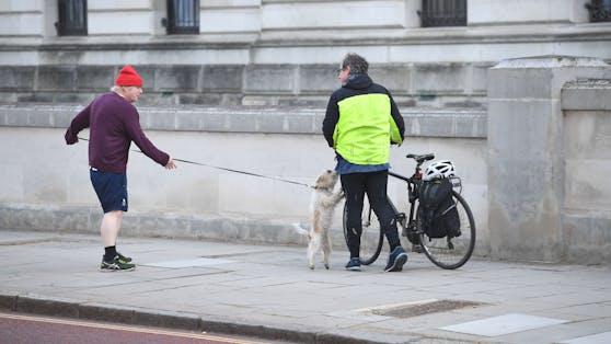 """""""Benimm dich!"""" - Boris Johnsons Rüde Dilyn schoss die Liebe ein..."""