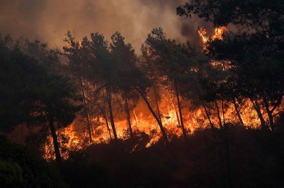 Waldbrand bei Marmaris: Auch dort kommen die Einsatzkräfte nicht zur Ruhe