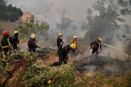 Die verheerenden Waldbrände wüten in Südeuropa unvermindert weiter. Laut Prognosen wird sich das Klima auch in Österreich so weit erhitzt haben, dass auch hierzulande die Gefahr steigt. Die Stadt Wien bereitet sich mit konkreten Vorbereitungsplänen darauf vor.