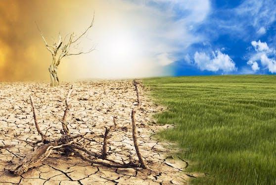 Mit dem Anstieg der Temperaturen drohen auch mehr Dürren.