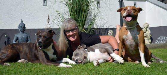 Ein Unbekannter vergiftete Hund Franky (Mi.) von Susanne Derfler aus Bad Ischl.