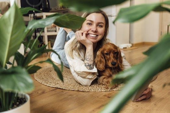 """Die erste Gemeinde in Österreich hat das Prüfverfahren der Haustier-Infoplattform """"Tobalie"""" bestanden und ist jetzt """"hundefreundliche Gemeinde""""."""