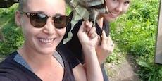 Bäriger Heiratsantrag im Tierpark Buchenberg
