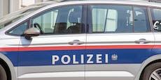 Diebstahl, Gewalt: Polizei schnappt Burschen (14)
