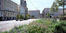 Linz in Zahlen, was du über die Stahlstadt wissen musst