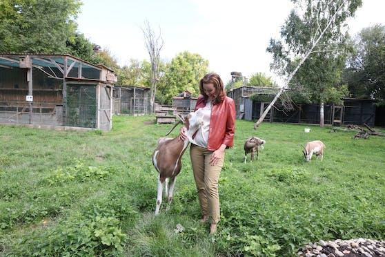 Alma Zadić bei ihrem Besuch der Eulen- und Greifvogelstation Haringsee