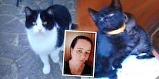 """""""Meine Katzen wurden grausam vergiftet"""""""