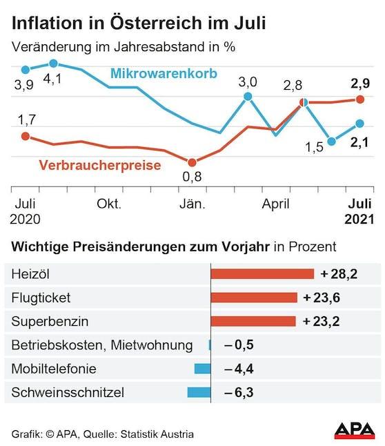 Verbraucherpreisindex VPI und Mikrowarenkorb, Entwicklung nach Monaten seit dem Vorjahr.