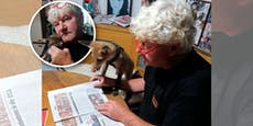 """Fuchsbaby """"Arthur"""" ist sogar beim Zeitunglesen dabei"""