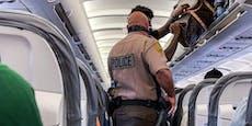 Kopf unter Rock & Co.:Die ärgsten Ausraster auf Flügen