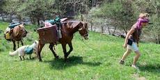 Frau zieht mit zwei Pferden und Hund durch Österreich