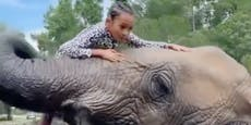 Elefant wirbelt Chris Browns Tochter (7) durch die Luft